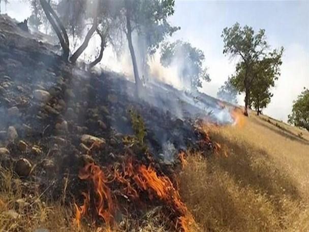 ادامه آتش سوزی های سریالی در پاتاوه شهرستان دنا