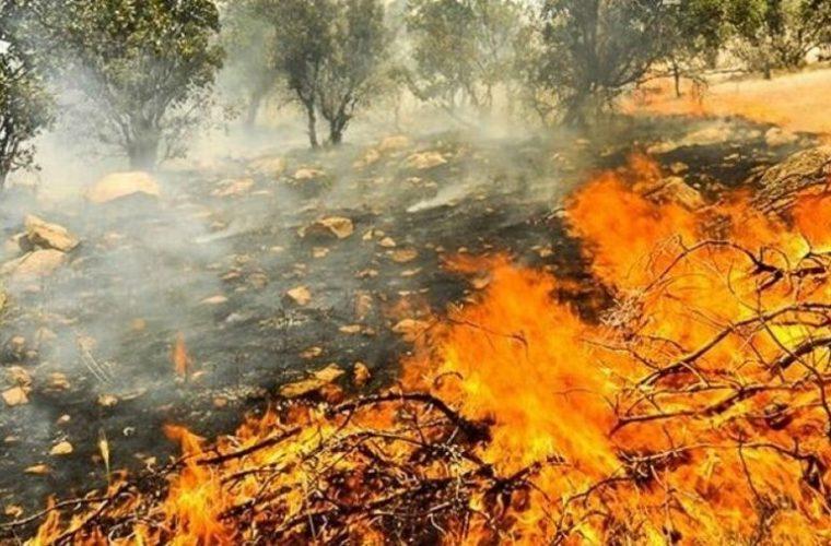 هشدار به مسئولان استان در خصوص آتش سوزی های شهرستان بویراحمد/تکرار خائیز و خامی در توان استان نیست