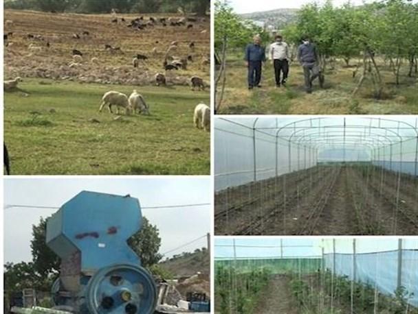 تسهیلات کمبهره برای رفع موانع تولید در شهرستان کهگیلویه